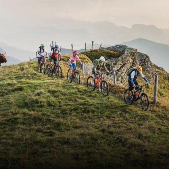 Mountainbike in der Salzburger Sportwelt