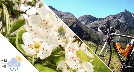 Biking in May in Flachau